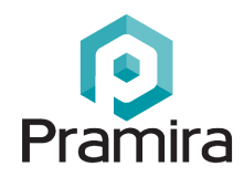 Pramira Inc